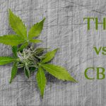 THC a CBD